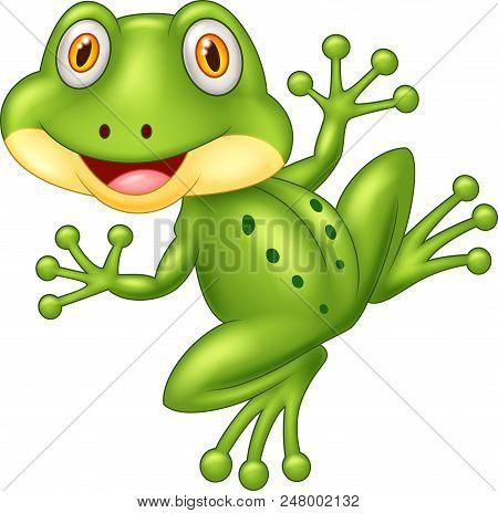 Cartoon Cute Frog Illustration On White Background