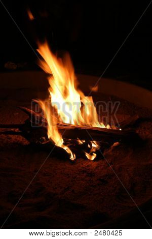 Burning Campfire Log