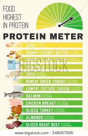 Protein Meter. High Protein Foods Concept. Vertical Poster With Lean Beef, Chicken, Fish, Eggs, Dair
