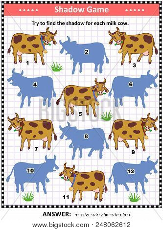Shadow Matching Puzzle Or Game For Kids And Adults With Spotted Milk Cows. Answer Included.