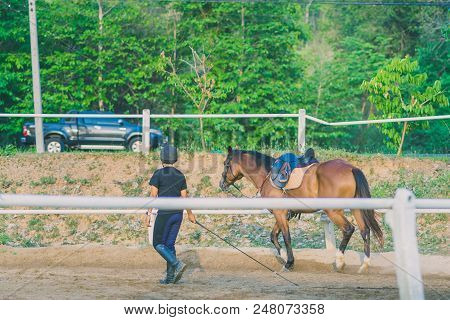 The female trainer is training the young horse for the tame in riding school. poster