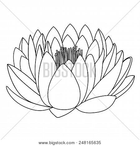 Outlined Lotus Pattern Flower Isolated On White Background (vector Illustration)