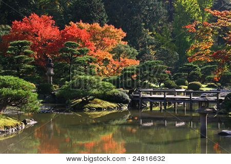 Arboretum,Seattle Japanese Garden #7