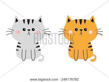 Gray Orange Cat Sad Vector Photo Free Trial Bigstock