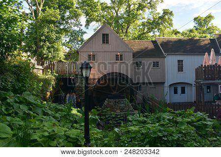 Green Vegetation Outside Of Jenny Grist Mill In Plymouth Massachusetts.