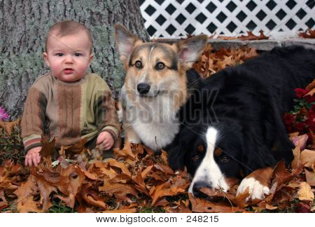 Baby And Two Dogs 002