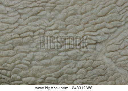 Gray White Fur Texture On A Piece Of Clothing
