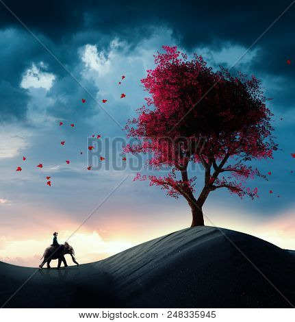 Explorer Riding A Elephant In The Desert And Discovers A Red Tree.