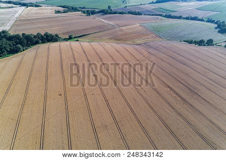 Aerial View On The Field With Rows