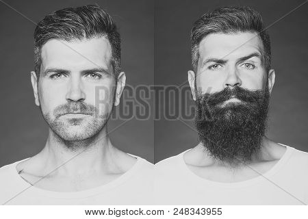 Before Shaving And After. Collage Portrait Of One Handsome Man On Left Bristle Haired On Right Unsha