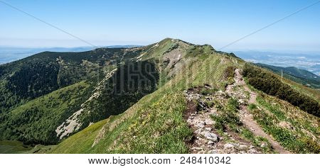 Maly Fatransky Krivan Hill In Mala Fatra Mountains In Slovakia Durig Nice Day With Clear Sky