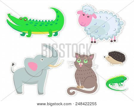 Funny Cartoon Animals Isolated On White Background. Big Crocodile, White Sheep, Fluffy Cat, Small He