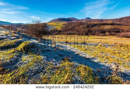 Morning Hoarfrost On The Grassy Meadow In Mountains. Beautiful Autumnal Landscape With Naked Forest