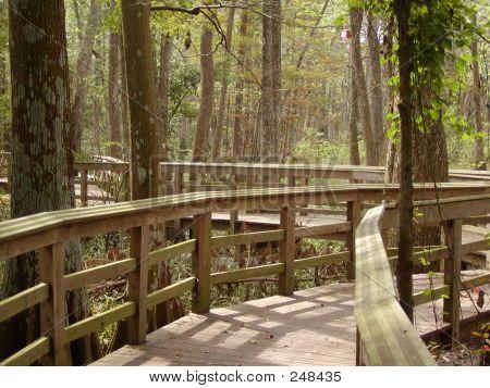 1495 Boardwalk