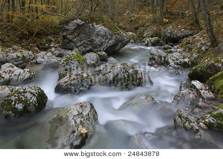River Stream In Colorful Autumn Forest