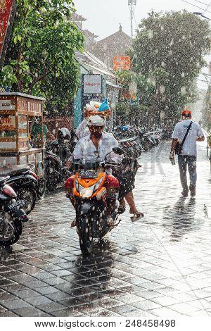 Ubud, Indonesia - March 08: Indonesian Man Riding A Motorbike Under The Rain On The Street Of Ubud,