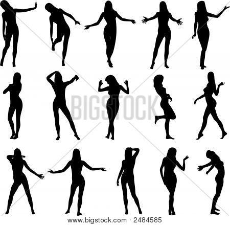 Illustration of sexy woman silhouettes - Vector poster