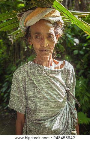 Ubud, Indonesia - February 28: Portrait Of Senior Balinese Woman Carrying Leafs On The Head On Febru