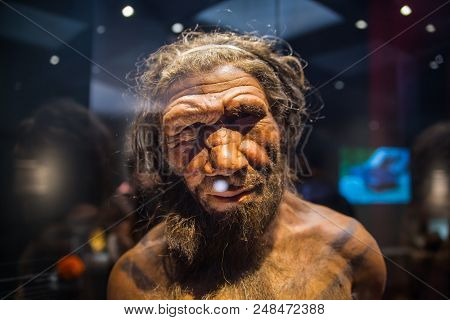 London, Uk - March 11, 2018: Neanderthal Homo Adult Male, Based On 40000 Year-old Remains Found At S