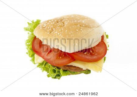 Hamburger isolated.