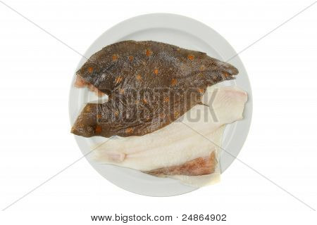 Raw Plaice Fillets