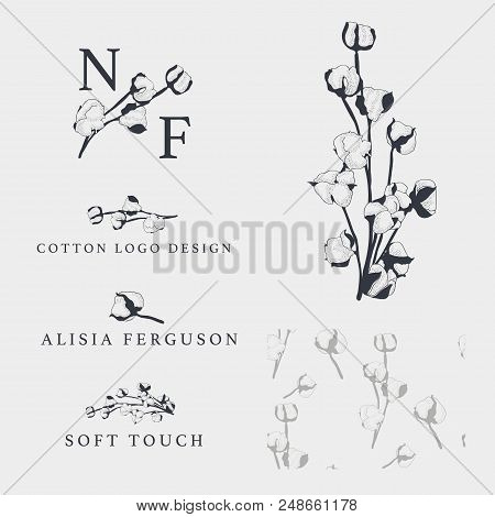 Cotton Bud Leaf Flower Vector Hand Drawn Logo Template, Packaging, Label, Identity, Branding. Stylis