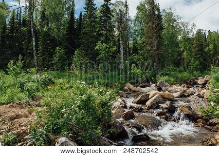 Forest Waterfall And Brook With Rocks And Trees