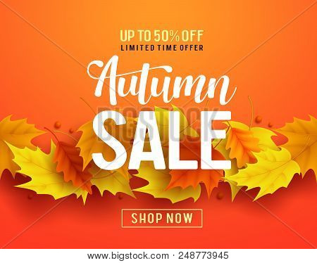Autumn Sale Vector Banner Design With Maple Leaves Elements In Orange Background For Fall Season Sho
