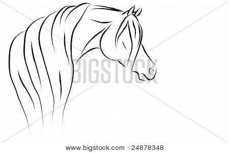 Stylized Arabian horse vector on a white background. poster