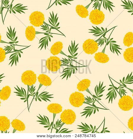 Yellow Marigold Seamless on Beige Ivory Background. Vector Illustration. poster