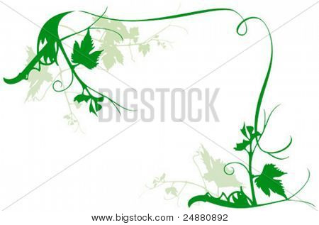 Vine frame - vector illustration - foliage, nature design