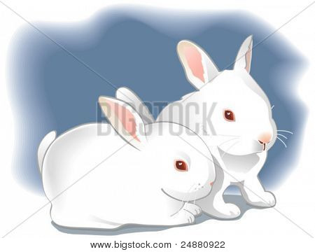 Two cute white baby rabbits. Easter bunnies, vector illustration