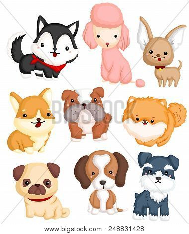 Dogs Type Vector Set With Many Type Of Dogs