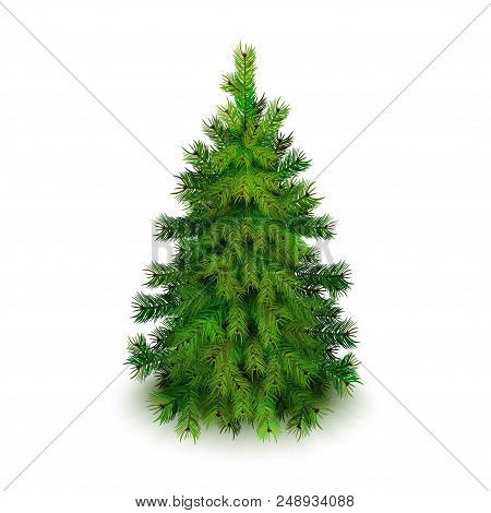 Stock Vector Illustration Realistic Christmas Tree Isolated On White Background Eps10