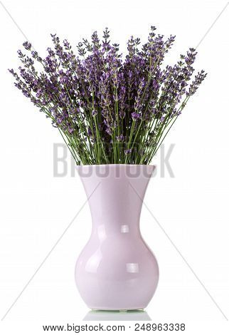 Bunch Of Lavender Flowers In Vase Isolated On White Background