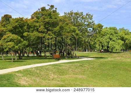 Pathway Through City Park In Summer.  Scenic View Of Public Park With Chess Board Tables. Picnic Are