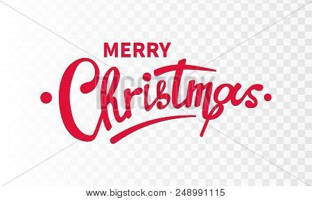 Stock Vector Illustration Calligraphic Text Merry Christmas Lettering Design Card Template Red Backg