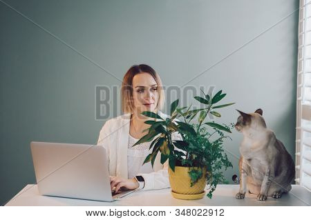 Caucasian Business Woman Working On Laptop Computer. Freelancer Working Remotely On Internet From Ho