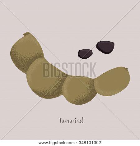 Tamarind Sweet Tropical Fruit And Brown Grains.