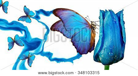 Blues Mood. Blue Tulip In Drops Of Water On An Abstract Blue Background. Abstract Blue Pattern And T