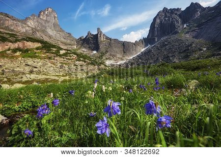 Fabulous Mountain Streams, Lush Greenery And Flowers Around. Thawed Spring Water From The Mountains.