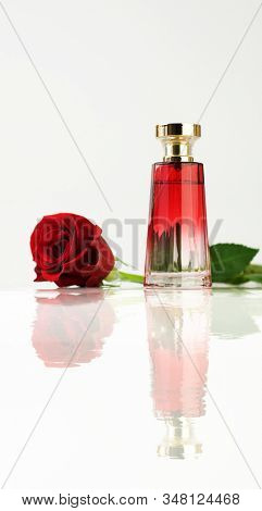 Red rose and bottle of perfume