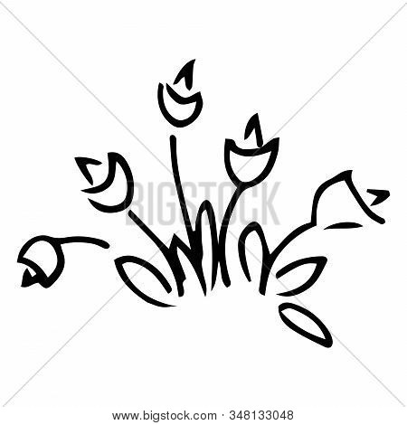 Tulip Doodle Icon. Vector Illustration Of Spring Tulip Flower. Hand Drawn Spring Tulip.