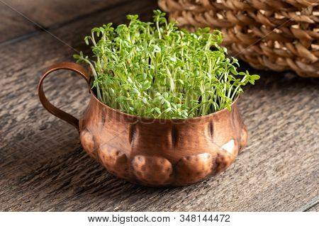 Fresh Garden Cress In A Vintage Cup On A Table