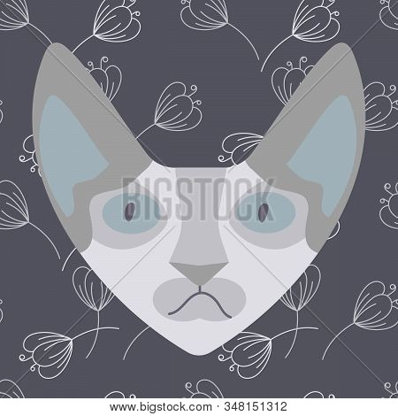 The Head Of A Sphinx Cat On A Blue Background With The Contours Of Delicate Colors. Hairless Naked C