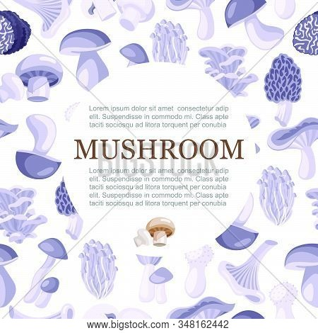 Mushrooms Edible Vegeterian Mushrooming Poster Monochrome Vector Illustration With Typography In Cir