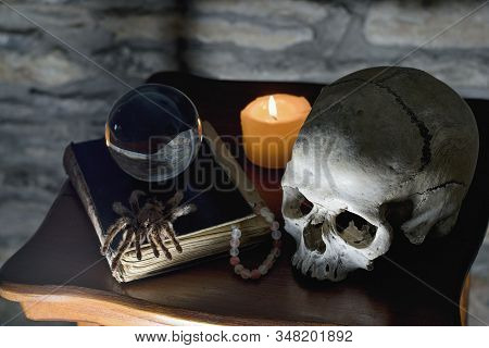 Occult Mystic Ritual Relics - Human Scull, Candle, Crystall Ball, Old Book And  Spider