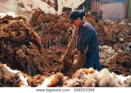 Arequipa, Peru - July 20 2010: Alpaca Wool Production. Woman Worker Sorting Brown Fibers In An Alpac