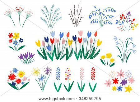 Set Of Spring Flowers In A Flat Style Isolated On White Background. Elegant Floral Decorations. Illu