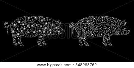 Glossy Mesh Swine With Lightspot Effect. Abstract Illuminated Model Of Swine Icon. Shiny Wire Frame